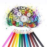 colori manuale istruzione
